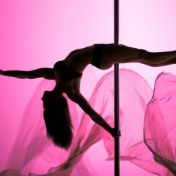 Танците на пилон – гол подарък за окото и мехлем за душата на мъжа