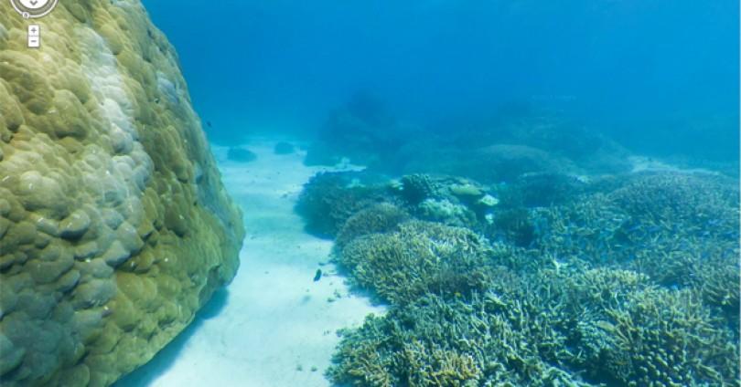 Google underwater StreetView – от чудесата на човешката цивилизация до красотата на дълбоководния свят