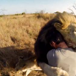 Впечатляващо видео – изумителният свят, в който живеем