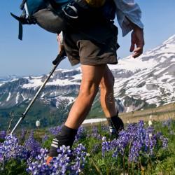 Какви маратонки да изберем за летния туризъм?