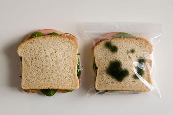 anti krajbena opakovka za sandvich
