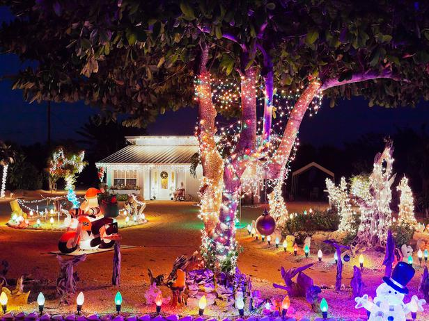 iStock-17084198_neon-christmas-lights-trees-eclectic-home_s4x3_lg